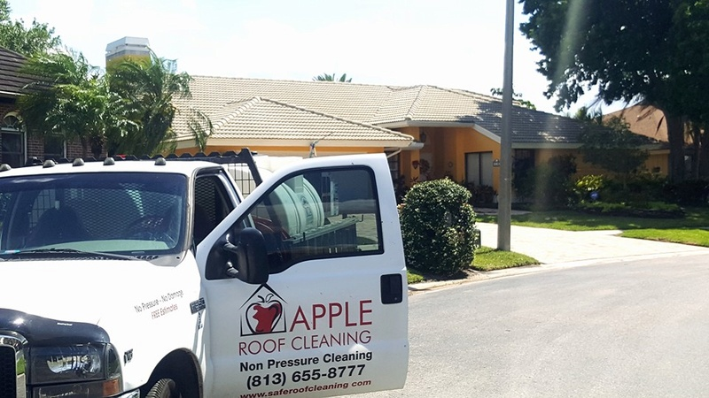 Tile Roof Cleaning In Tampa Florida Area Cleane10