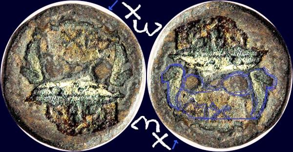 bronze grec à la tête laurée Marcus11