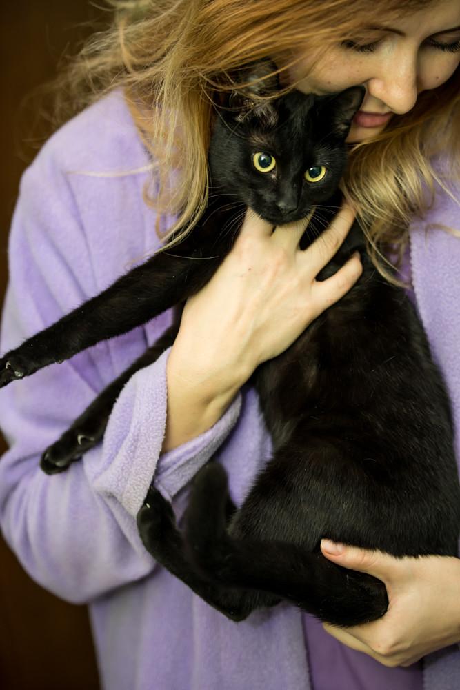 SERENA (Gato Nero) - chat femelle née en juin 2016 - CARMINA BUCAREST.  Réservée adoption via une autre asso Serena13