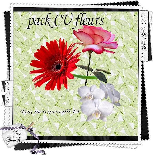pack cu fleur Packcu10