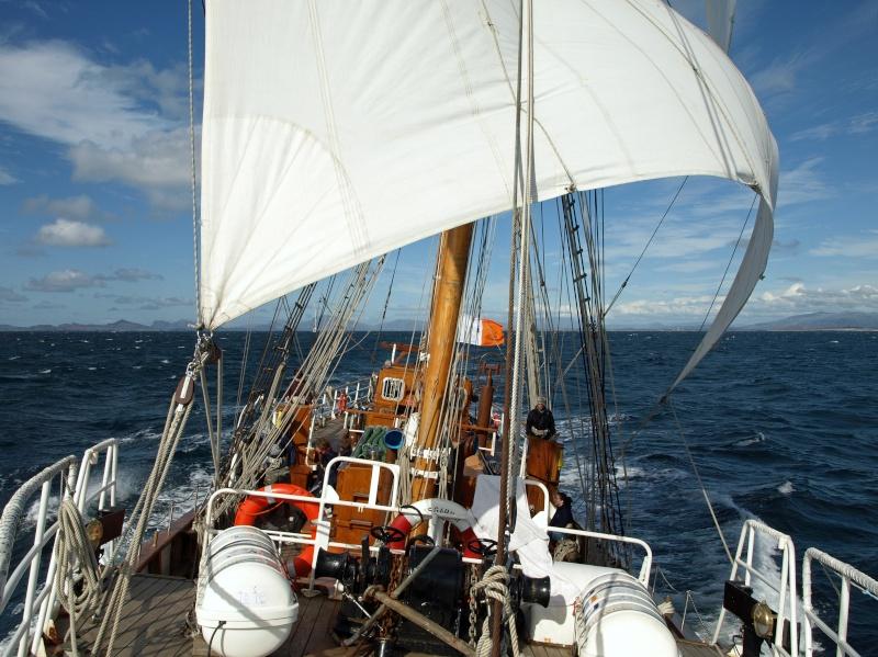 Pour se souvenir d'Asgard II dans la Tall Ships' Race 2008 2008_010