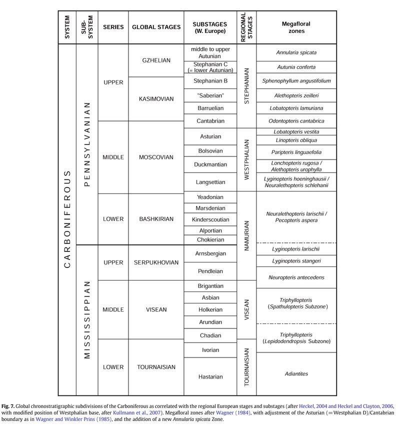 Flore Carbonifère des Alpes Françaises part 1 - Page 5 18-110