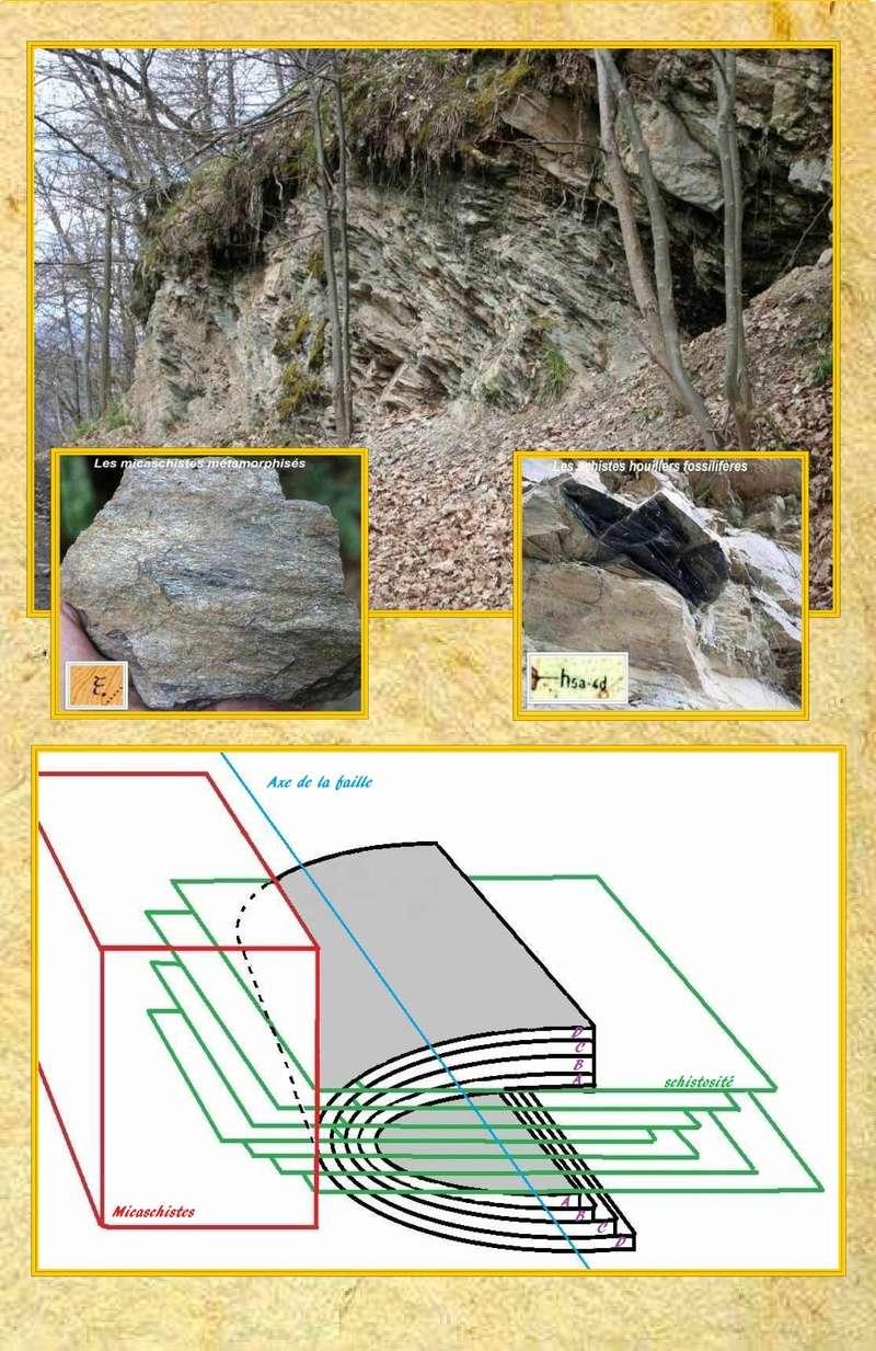 Flore Carbonifère des Alpes Françaises part 1 - Page 5 Faille10