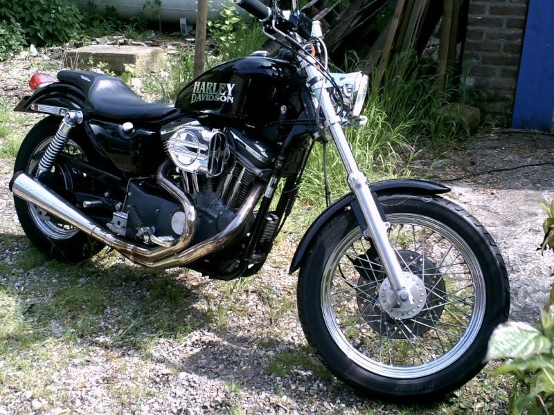 En 883... combien sommes nous sur le Forum Passion-Harley - Page 3 Pict3011