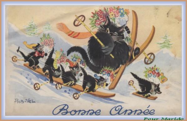 CHATS BONNE ANNEE 210
