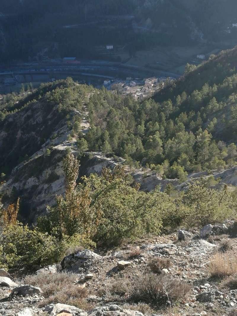 Petite balade (tout seul)sur les hauteurs de puget theniers Img_2011