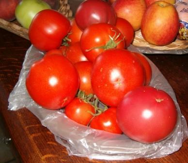 Ma récolte du jour. 14_08_10