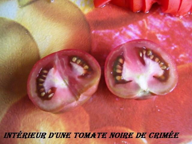 poivrons et tomates. 1_08_211