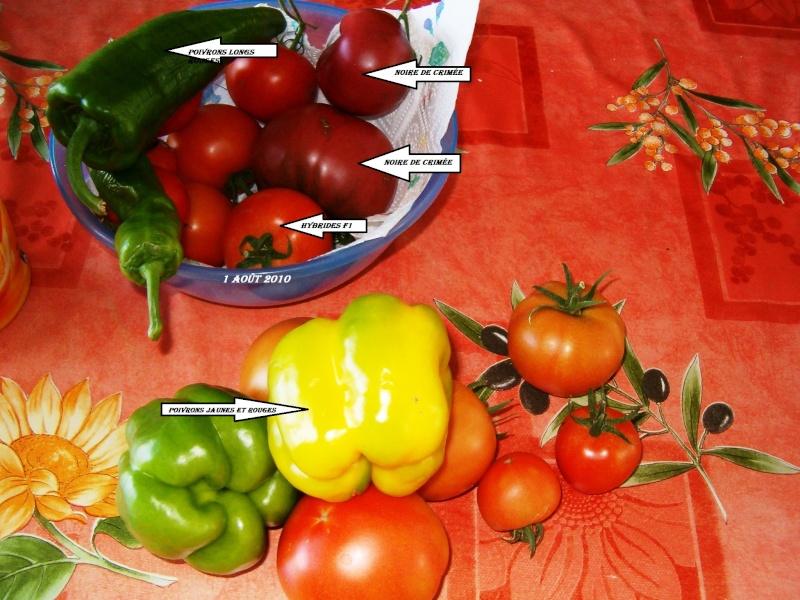 poivrons et tomates. 1_08_214