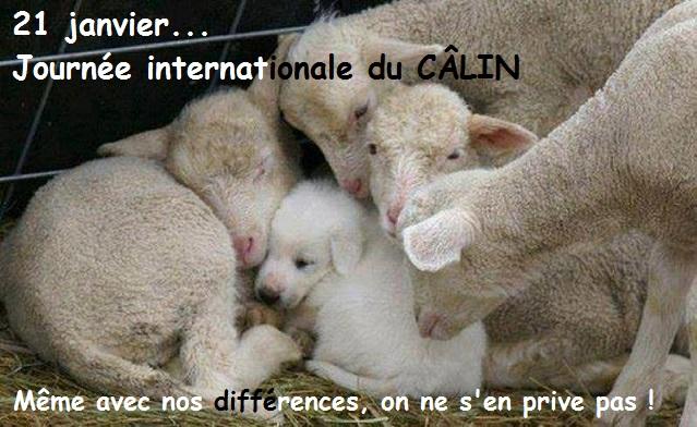 Hug day, journée des calins (21 janvier) Calinh11