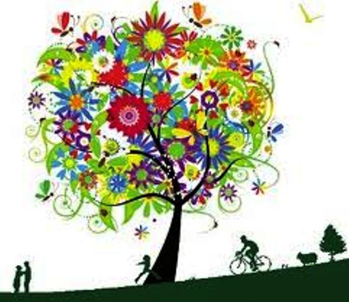 Tou Bichvat (Nouvel an des arbres) Images10