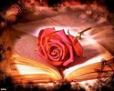 , je souhaite que tu prospères à tout point de vue et sois en bonne santé _4152732