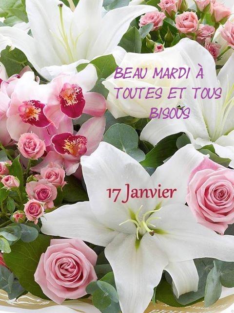 Mardi 17 janvier  15977810