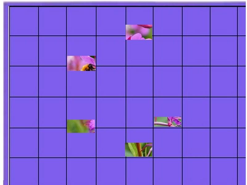 une fleur - ajonc - 20 janvier trouvée par Martine Fleur11