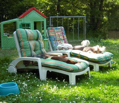Confort d'été (27 juin 2010) Tous-t10