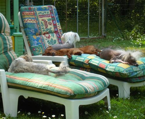 Confort d'été (27 juin 2010) Tous-t12