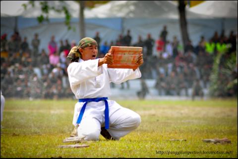 LAPORAN EKSPO KERJAYA & INOVASI ATM - Page 2 Karate11