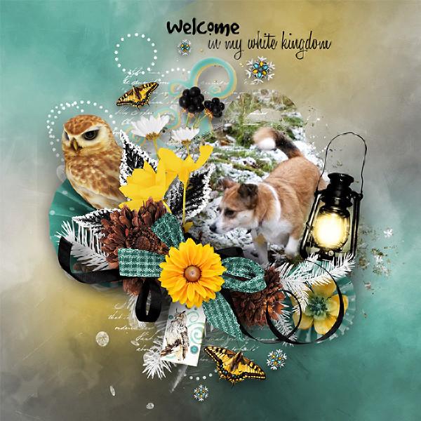 Winter owl est maintenant en ligne ! Gb_wo_12