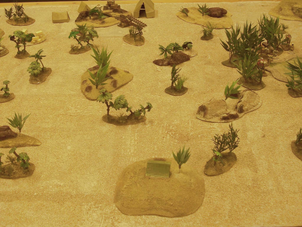La rose des sables Burdig42