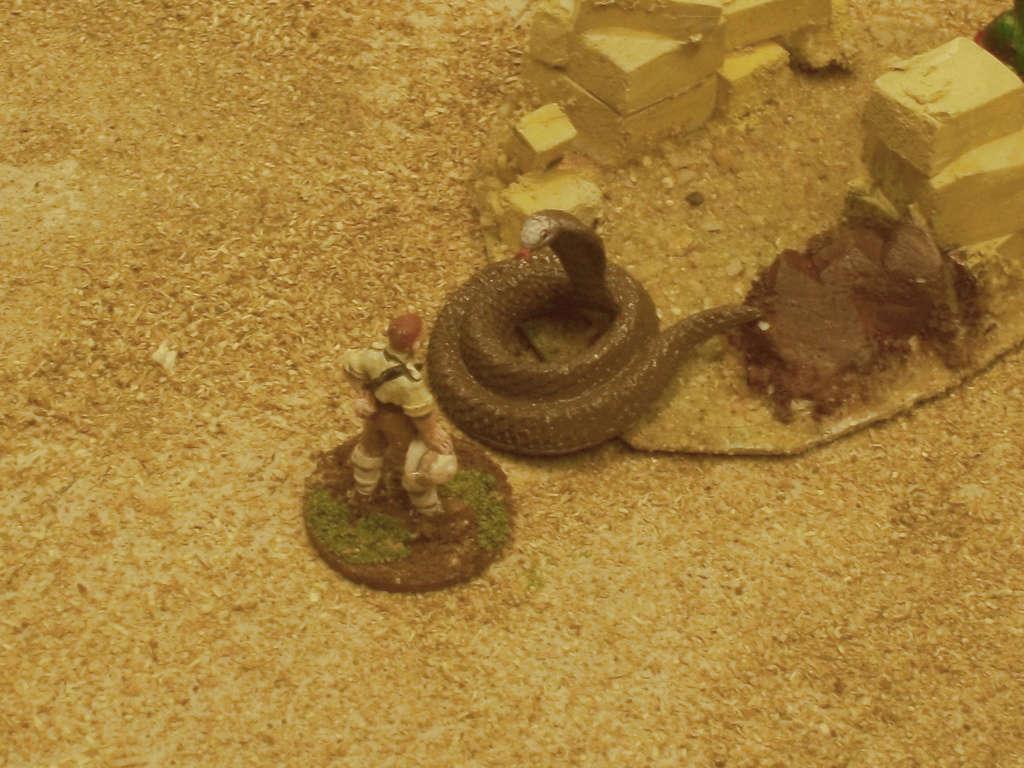 La rose des sables Burdig45