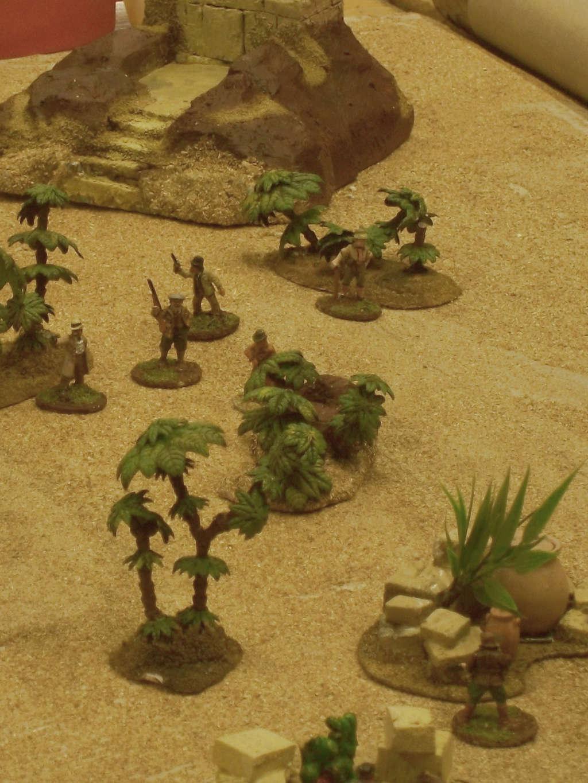 La rose des sables Burdig54