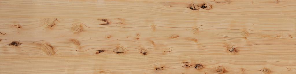 [Identification de bois] Mais qu'est-ce que cèdre ? - Page 2 Cyprys11