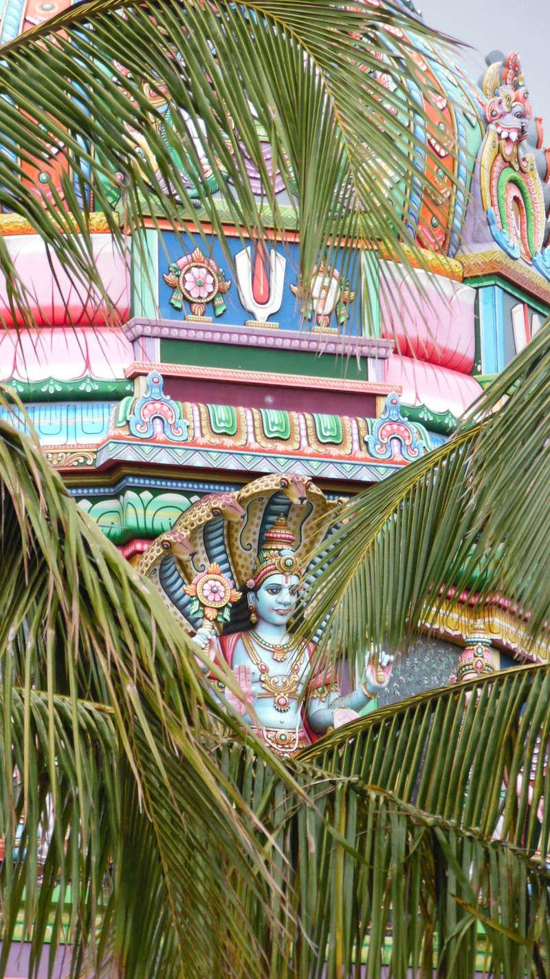 temples hindous dans le monde Sam_0510