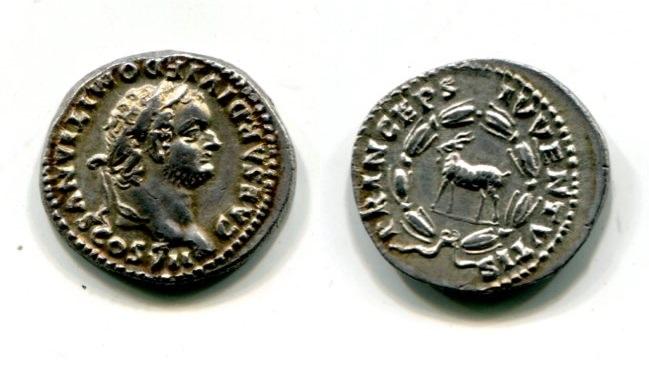 Les romaines de slynop - Page 4 Domiti11
