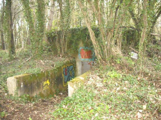 Vestiges camp allemand à prospecter à Plouay  12974810