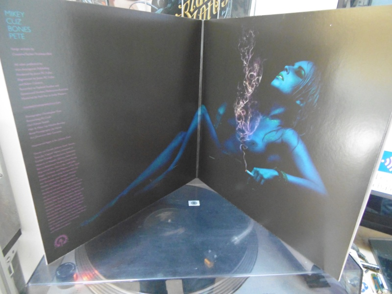"Pochettes d'albums de métal ""Sexy"" ! Mammot12"