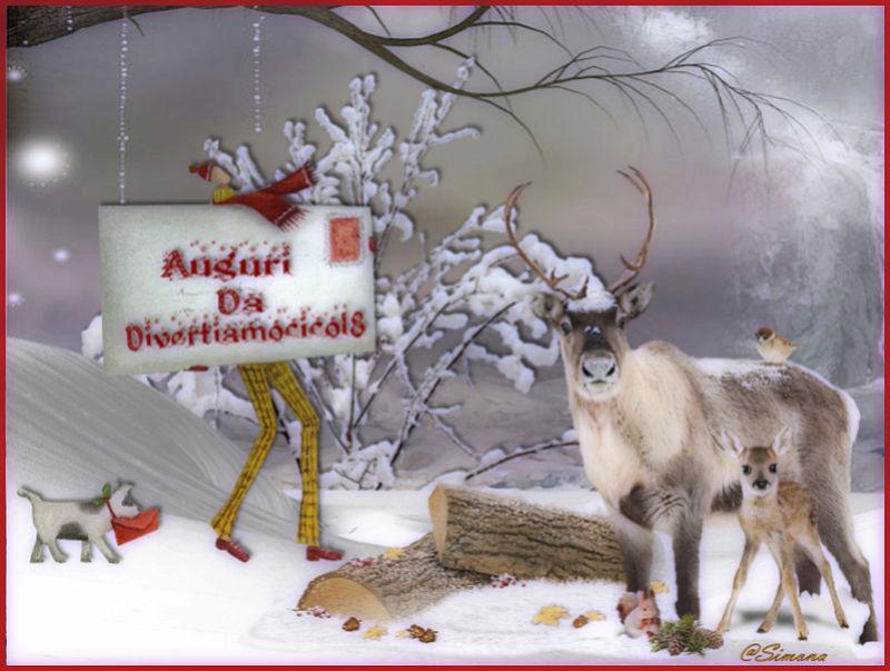 immagini Natale 2011-12-13-14-15 - Pagina 5 14n10