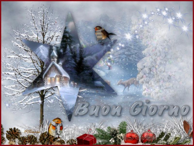 immagini Natale 2011-12-13-14-15 - Pagina 5 15n10