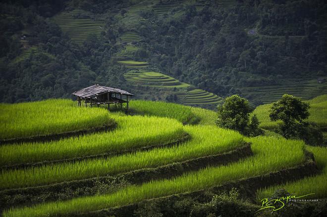 Hình ảnh Việt Nam huyền bí và thân thuộc 10-14410