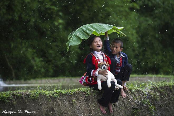 Hình ảnh Việt Nam huyền bí và thân thuộc 2-144710