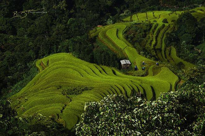 Hình ảnh Việt Nam huyền bí và thân thuộc 3-144710