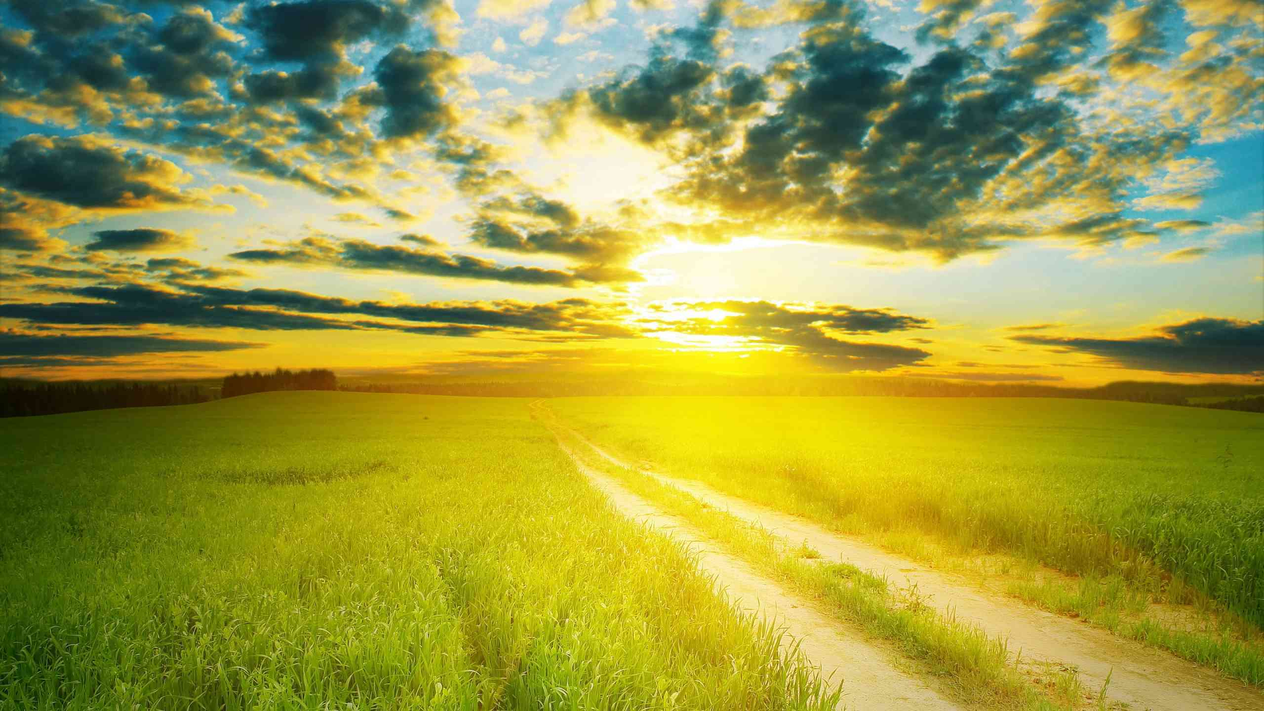 Mặt Trời Mọc Hinh-a15
