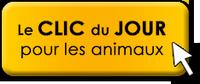Clic Animaux du mois de novembre  - Page 2 Clic-d10