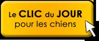 Clic Animaux du mois de novembre  Clic-d11