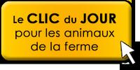 Clic Animaux du mois de novembre  - Page 2 Clic-d13