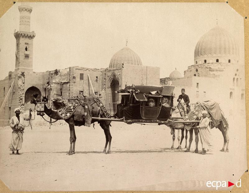 Le chameau est l'avenir du tracteur. 01-d1310