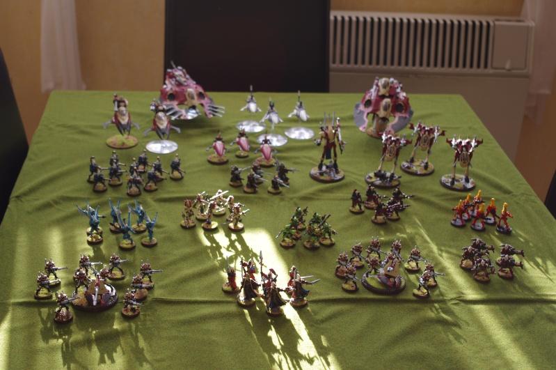40K Mon armée Eldars Imgp2216