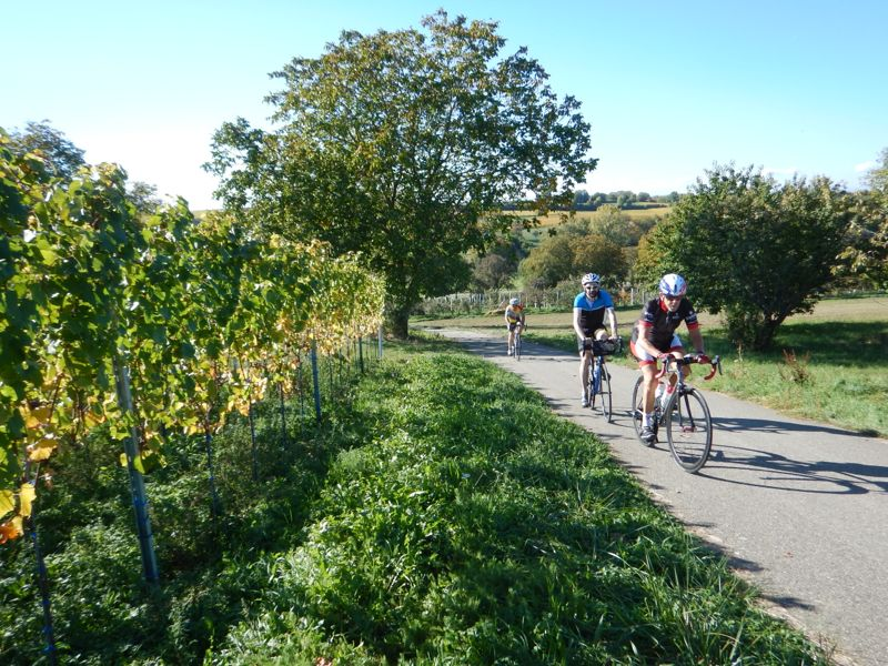 vélo de route samedi 13 Dscn2918