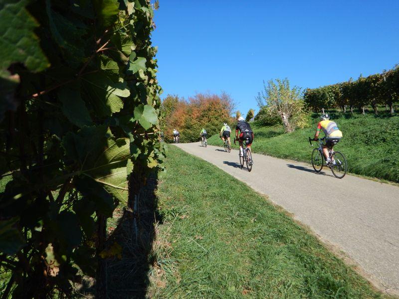vélo de route samedi 13 Dscn2919