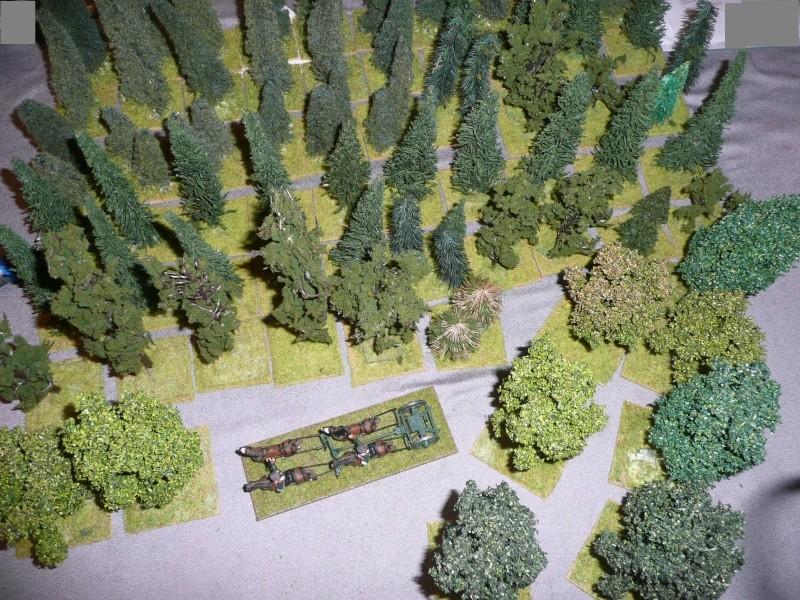 Reconstitution de Borodino-la Moskowa 20 & 21 octobre 2012 Arbres10