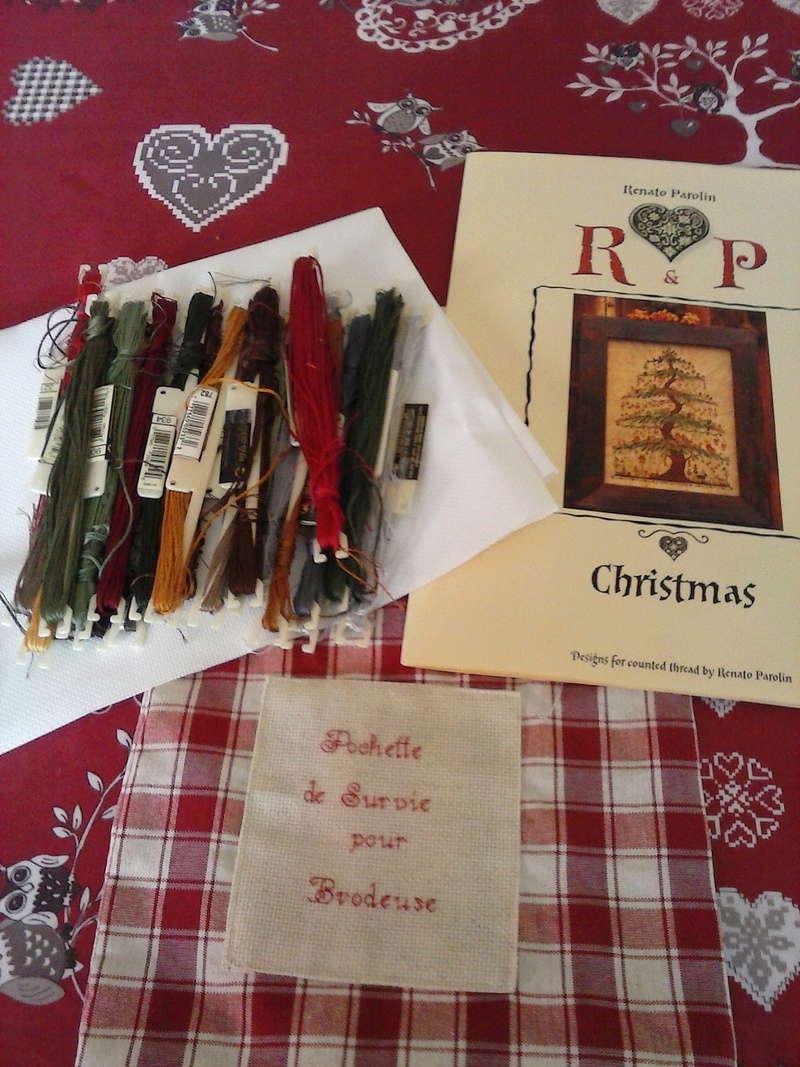 SAL Christmas Renato - Page 2 Cam02731
