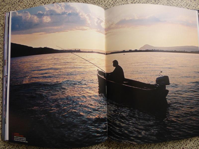 [livre] Johnny Hallyday notre icône P1070832
