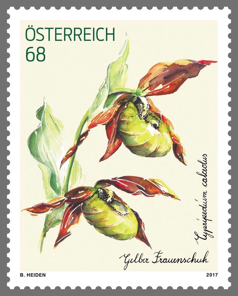 Treuebonusmarke 2016 - Gelber Frauenschuh 0304_t10
