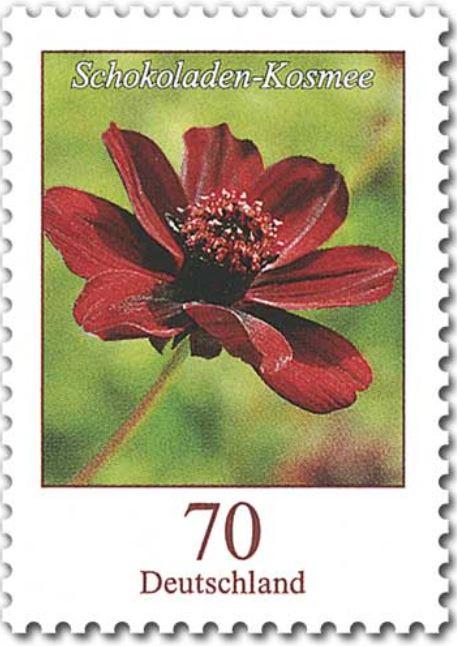 Blumengruß aus Deutschland - Seite 2 070_sc10