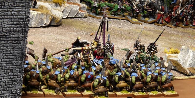 Les Cask Bleus à Naggaroth (mini-campagne) P1150995