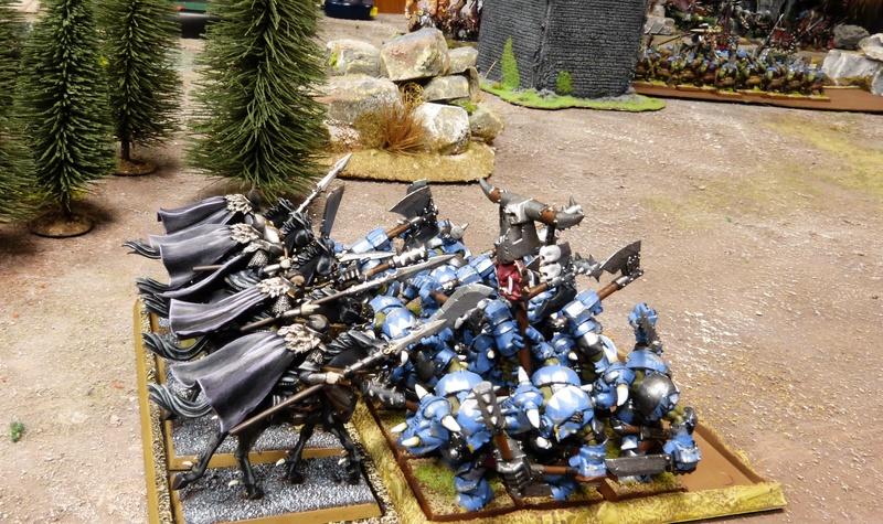 Les Cask Bleus à Naggaroth (mini-campagne) P1150997